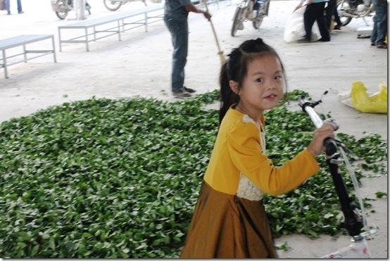 Чай Те Гуань Инь и девочка